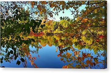 Canvas Print featuring the photograph Enchanted Fall by Valentino Visentini