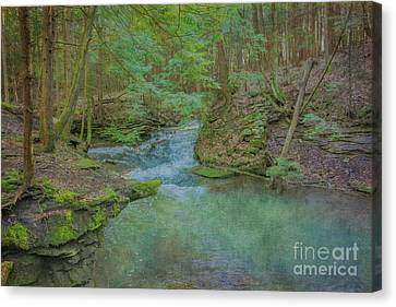 Canvas Print featuring the digital art Enchanted Forest One by Randy Steele