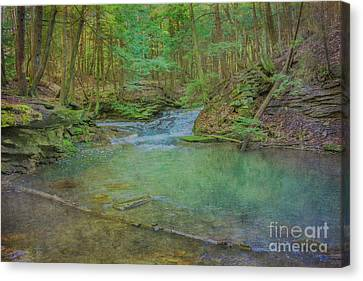 Canvas Print featuring the digital art Enchanted Forest Two by Randy Steele