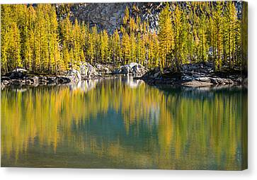 Canvas Print featuring the photograph Enchanted Larches by Brian Bonham