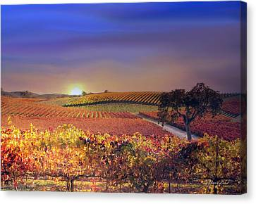 Enchanted Vineyard Canvas Print by Stephanie Laird
