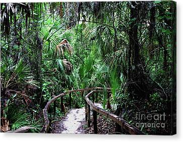 Canvas Print featuring the photograph Enchanted Walk by Gary Wonning