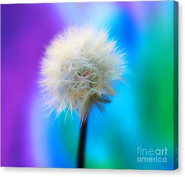 Floral Digital Art Canvas Print - Enchanted Wishes by Krissy Katsimbras