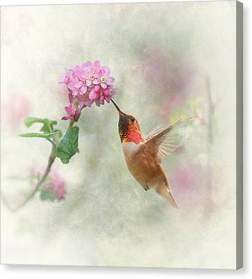 Canvas Print featuring the photograph Enchantment In The Garden by Angie Vogel