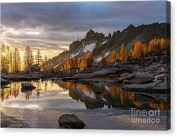 Enchantments Golden Sunrise Larches Reflection Canvas Print by Mike Reid