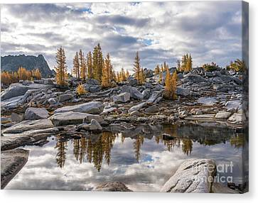 Enchantments Larches And Granite Landscape Canvas Print by Mike Reid