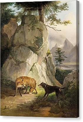 Encounter Of Fox And Dog In Rocky Landscape Canvas Print by MotionAge Designs