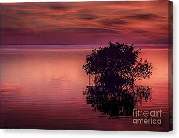 End Of Another Day Canvas Print