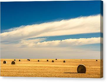 End Of Autumn Canvas Print by Todd Klassy