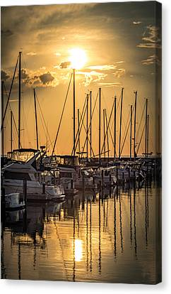 End Of Season Canvas Print by James  Meyer