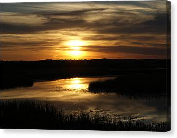 End Of The Day Canvas Print by Ron Read