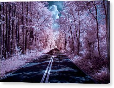 Canvas Print featuring the photograph End Of The Road by Louis Ferreira