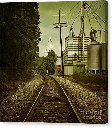 Endless Journey Canvas Print by Andrew Paranavitana