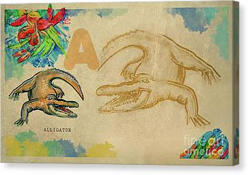 Canvas Print featuring the drawing English Alphabet , Alligator  by Ariadna De Raadt
