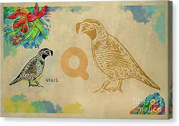 Canvas Print featuring the drawing English Alphabet , Quail by Ariadna De Raadt