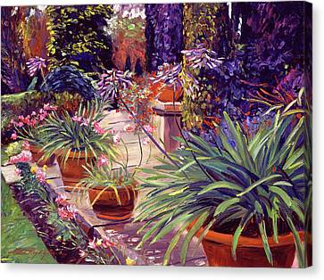 English Estate Patio Garden Canvas Print by David Lloyd Glover