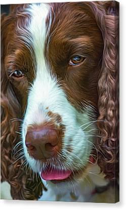 English Springer Spaniel 2 - Paint Canvas Print by Steve Harrington
