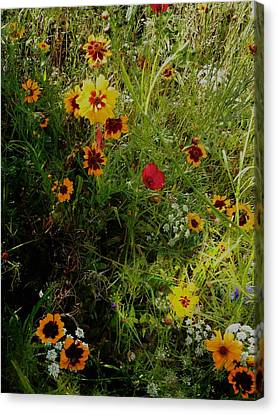 English Cottage Garden Flowers 1 Canvas Print by Dorothy Berry-Lound