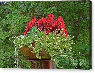 Enjoy The Garden Canvas Print