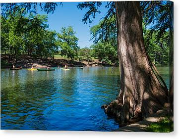 Enjoying The Guadalupe River - Camp Waldemar Texas Canvas Print by L O C