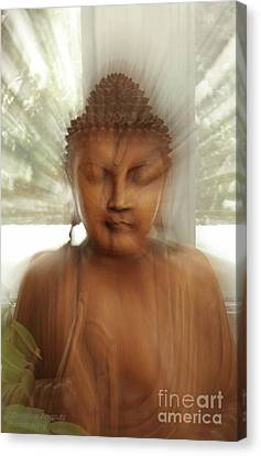 Enlightened Buddha Canvas Print by Christine Amstutz