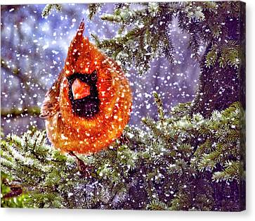 Enough Of This White Stuff Canvas Print by Diane Schuster
