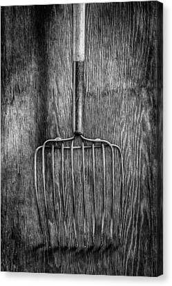 Ensilage Fork Down Canvas Print by YoPedro