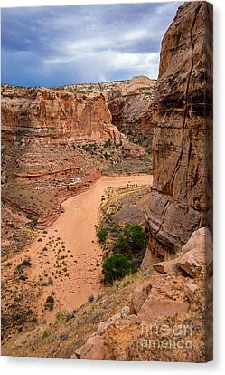 Entering Horseshoe Canyon - Utah Canvas Print