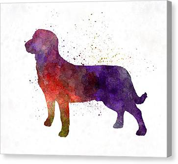 Entlebuch Cattle Dog In Watercolor Canvas Print