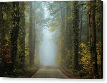Entrance To Autumn Canvas Print by Martin Podt