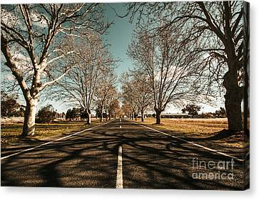 Entrance To Narrandera The Town Of Trees Canvas Print