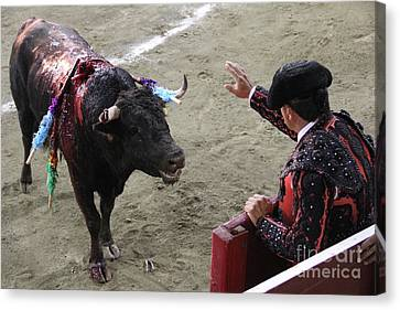 Canvas Print - Entrancing The Bull Tlaxcala Mexico by Linda Queally