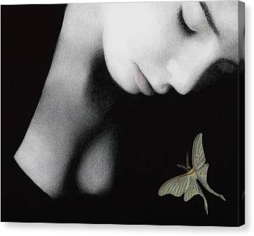 Ephemeral Canvas Print by Pat Erickson