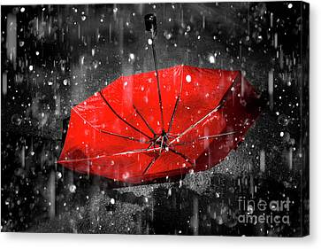 Raindrop Canvas Print - Epiphany by Jorgo Photography - Wall Art Gallery