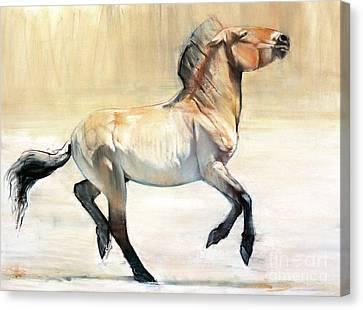 Equus  Canvas Print by Mark Adlington