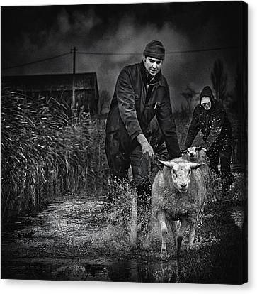 Escape From The Flood Canvas Print by Piet Flour