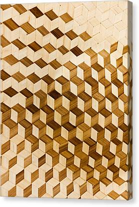 Escher-esque Basketweave Canvas Print