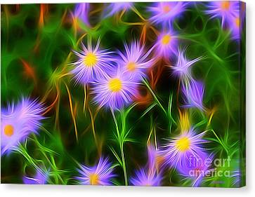 Essence Of Asters Canvas Print