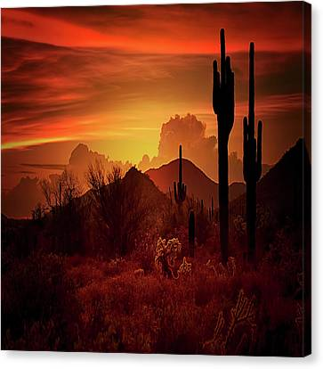 Canvas Print featuring the photograph Essence Of The Southwest - Square  by Saija Lehtonen