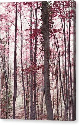 Ethereal Austrian Forest In Marsala Burgundy Wine Canvas Print by Brooke T Ryan