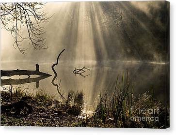 Canvas Print featuring the photograph Ethereal - D009972 by Daniel Dempster
