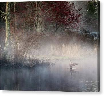 Canvas Print featuring the photograph Ethereal Goose by Bill Wakeley