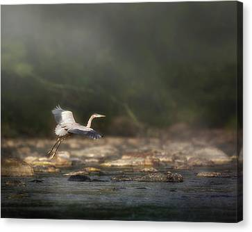 Ethereal Landing Canvas Print