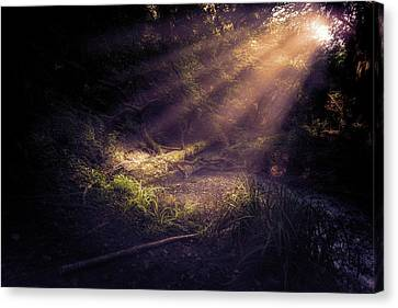 Ethereal Light Canvas Print
