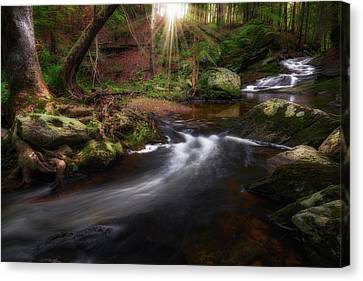 Canvas Print featuring the photograph Ethereal Morning 2017 by Bill Wakeley