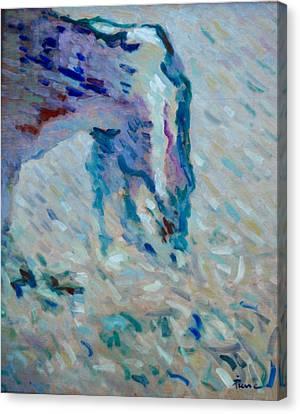 Etretat-2 Canvas Print