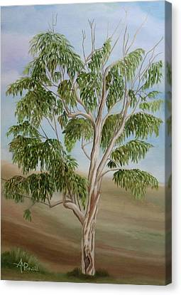 Eucalyptus Canvas Print by Angeles M Pomata