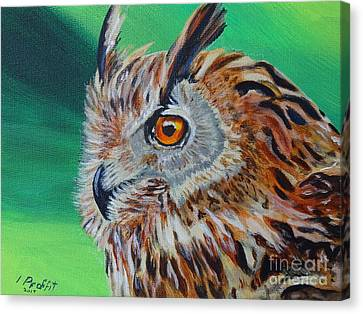 Eurasian Eagle-owl Canvas Print by Isabel Proffit