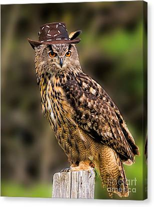 Eurasian Eagle Owl With A Cowboy Hat Canvas Print by Les Palenik