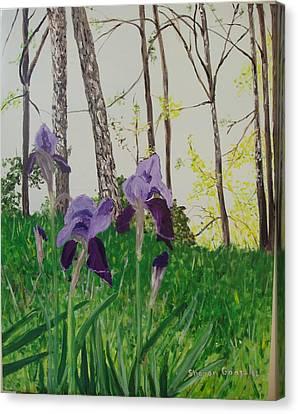 Eureka Springs Irises Canvas Print by Sharon  De Vore